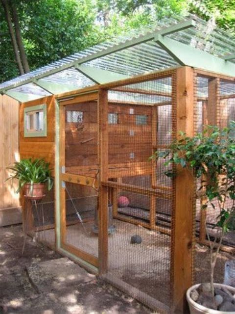 safe-and-smart-organized-outdoor-cat-areas-20