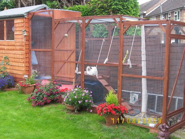 safe-and-smart-organized-outdoor-cat-areas-6