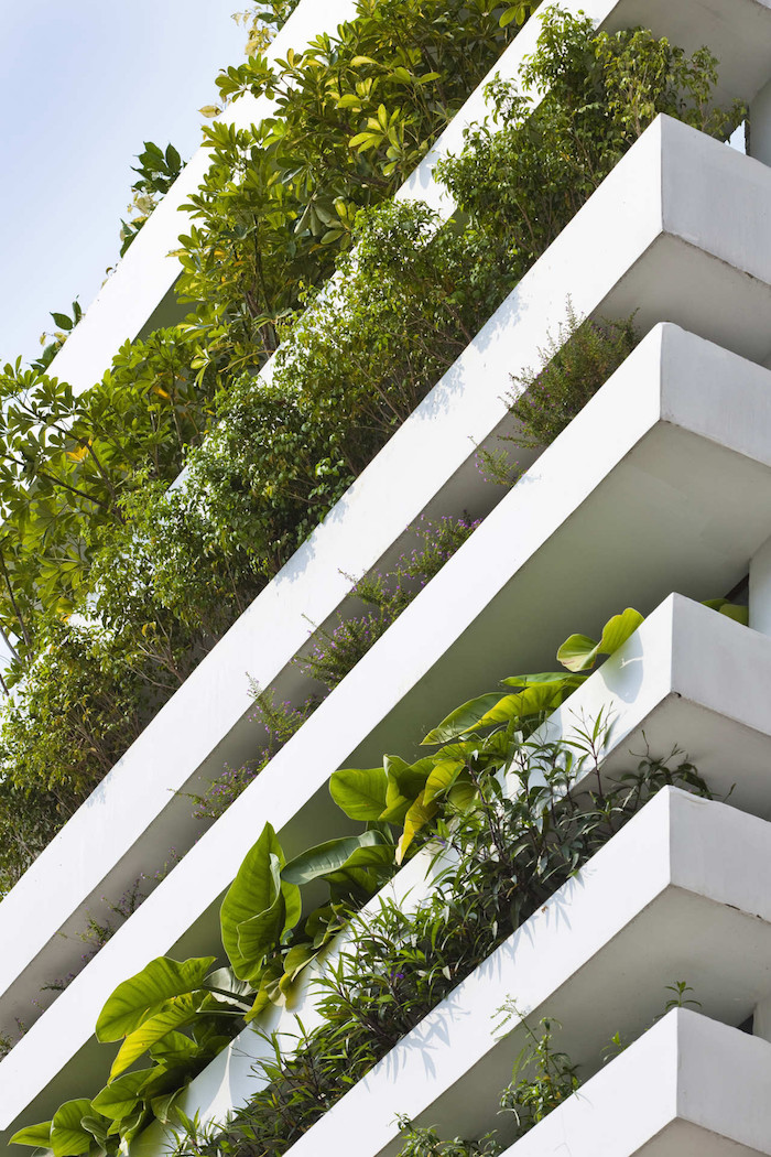 minimalist-concrete-house-with-a-large-vertical-garden-2
