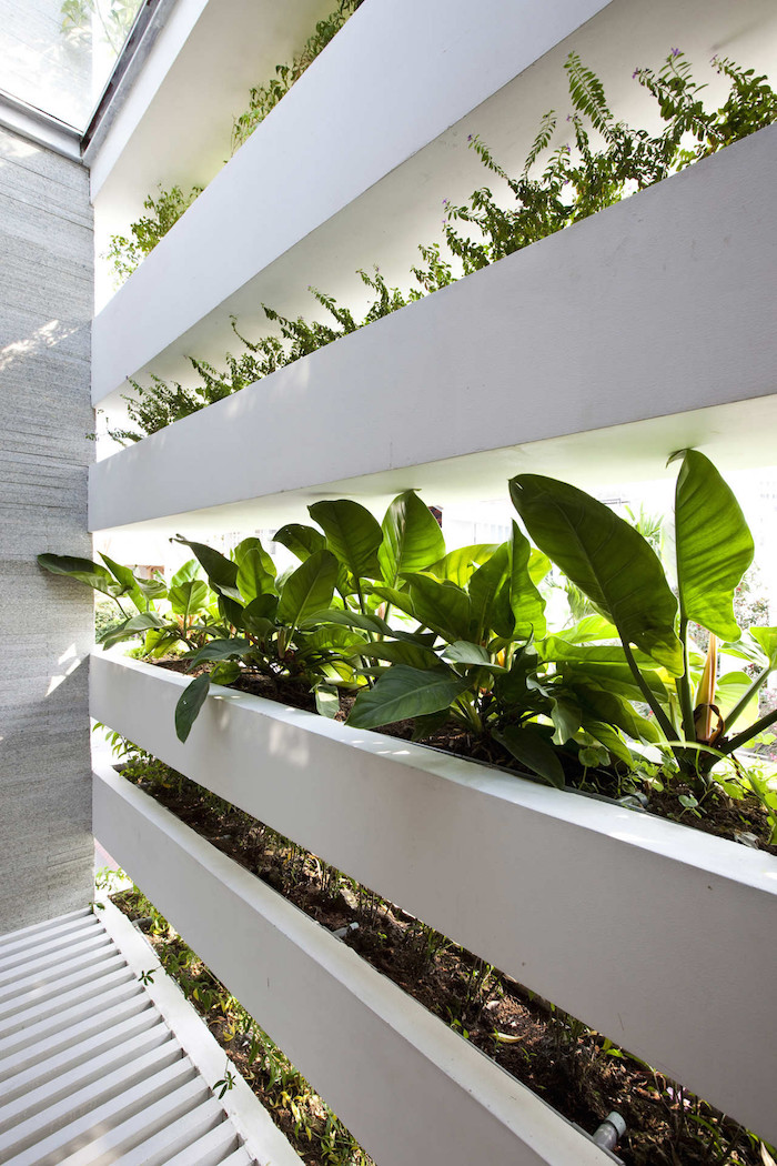minimalist-concrete-house-with-a-large-vertical-garden-5