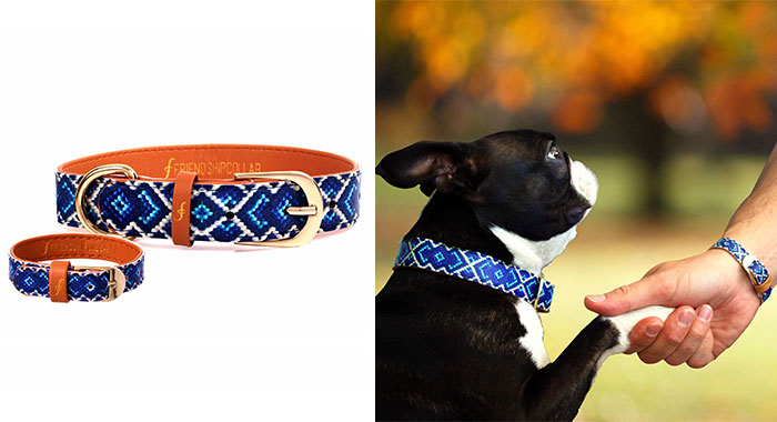 matching-pet-collar-bracelet-friendship-collar-55