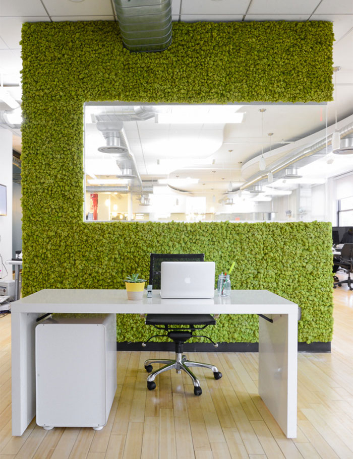 moss-walls-green-interior-design-3__700