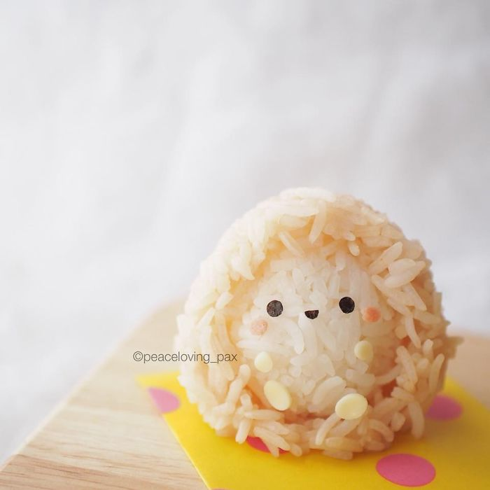 im-a-doctor-who-makes-adorable-rice-balls-during-her-free-time-37__700