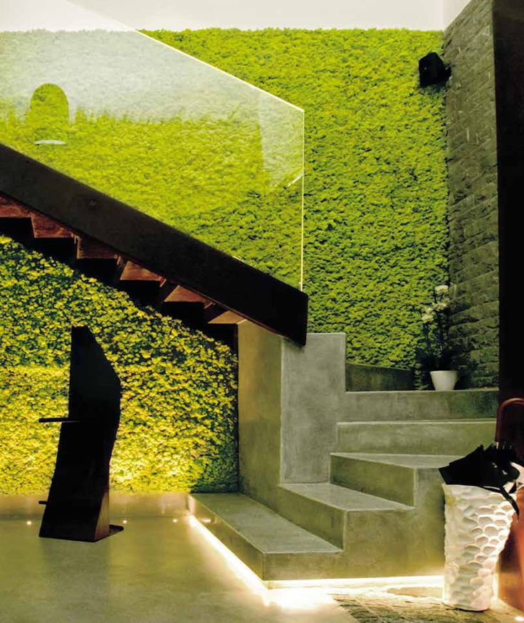 peaceful-indoor-living-wall-designs-for-any-home-10