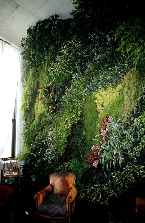 peaceful-indoor-living-wall-designs-for-any-home-12