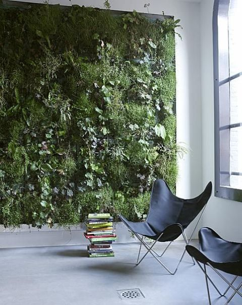 peaceful-indoor-living-wall-designs-for-any-home-13