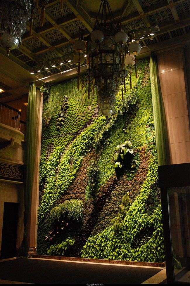 peaceful-indoor-living-wall-designs-for-any-home-14