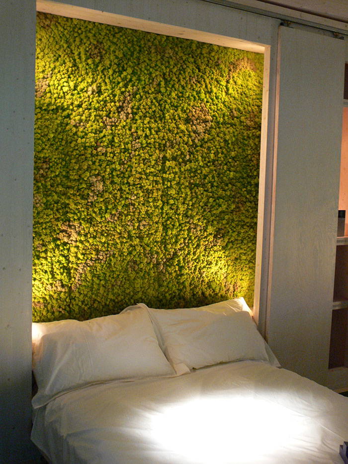 peaceful-indoor-living-wall-designs-for-any-home-4