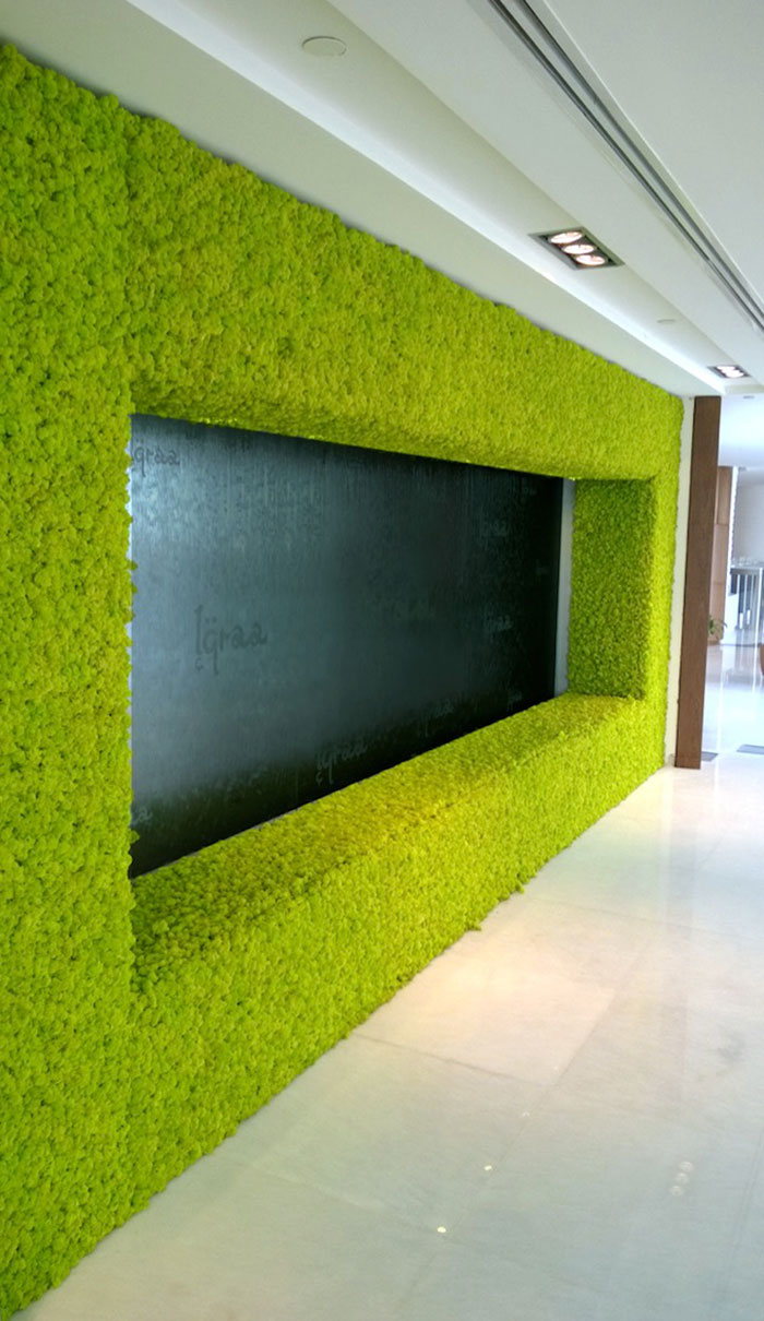 peaceful-indoor-living-wall-designs-for-any-home-6