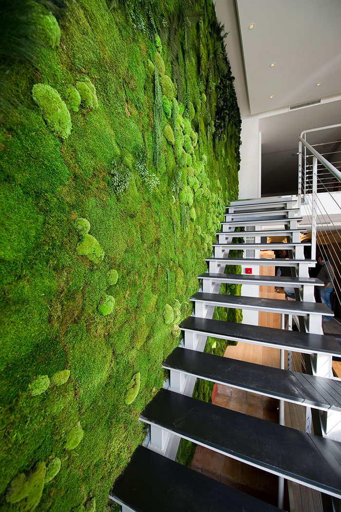 peaceful-indoor-living-wall-designs-for-any-home-7