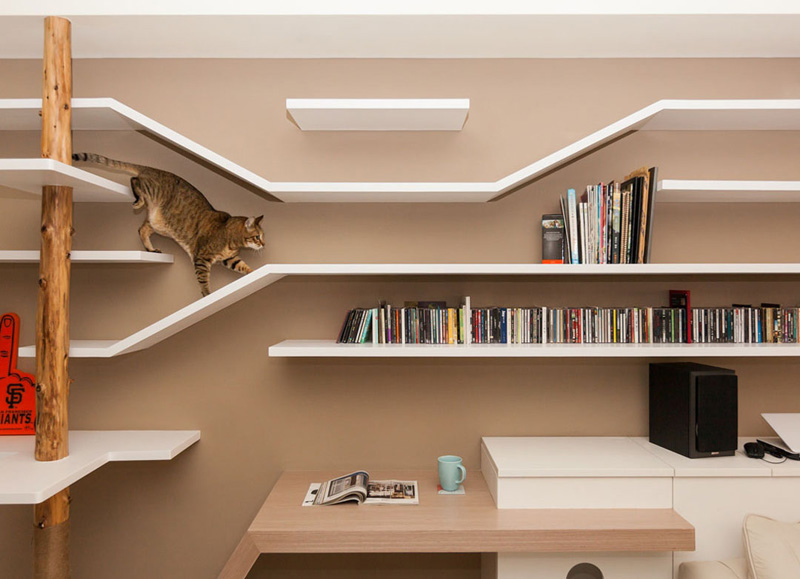 modern-custom-shelving-to-keep-the-cat-happy-1