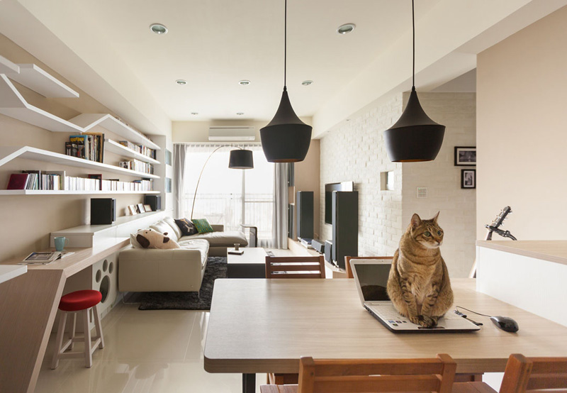 modern-custom-shelving-to-keep-the-cat-happy-4