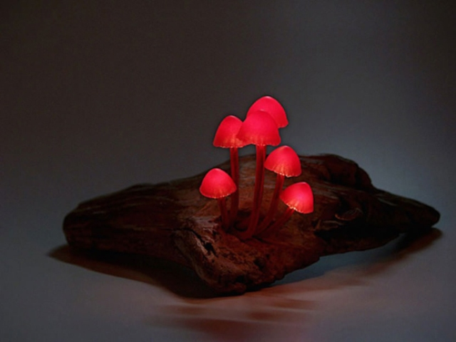 cute-and-whimsy-little-mushroom-lamps-5