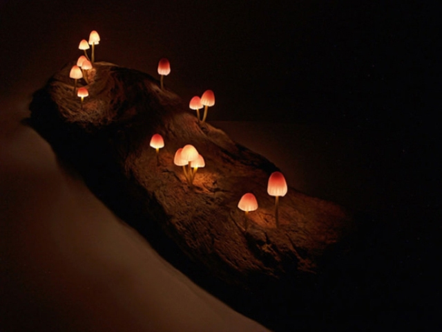 cute-and-whimsy-little-mushroom-lamps-6