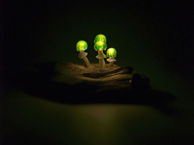 cute-and-whimsy-little-mushroom-lamps-9