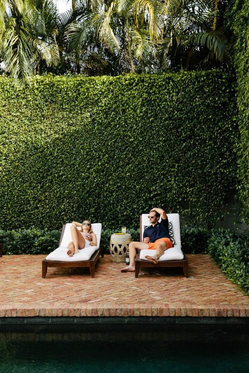 03-tall-green-hedges-for-a-pool-and-deck-zone
