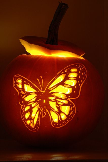 03-chic-butterfly-pumpkin-for-girlish-decor