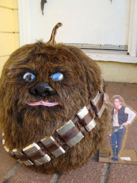 09-Chewbacca-pumpkin-covered-with-fur