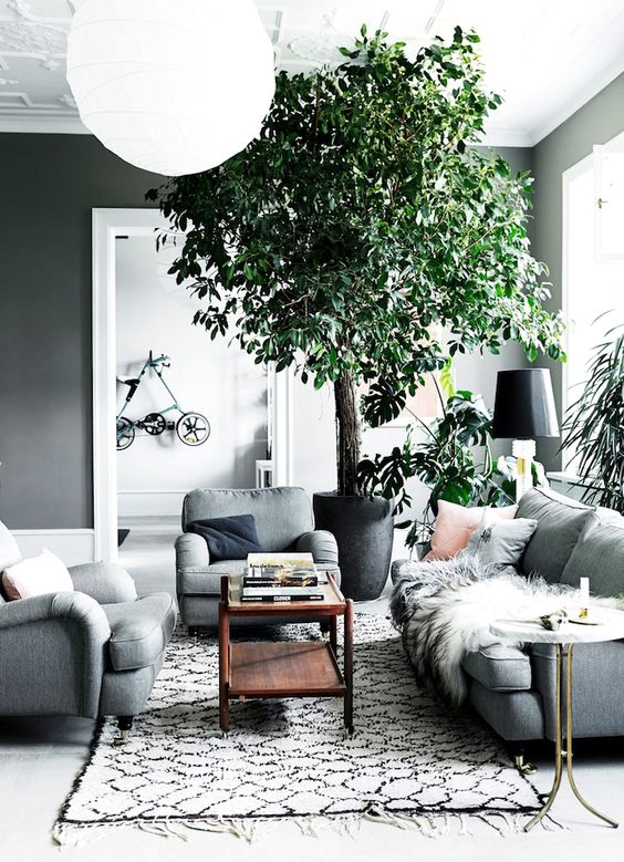 29-make-green-accents-in-your-dove-grey-living-room-with-potted-greenery-and-plants