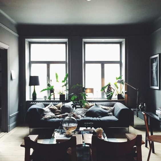 29-moody-living-room-in-dark-grey-and-black-flooded-with-light-and-enlivened-with-greenery