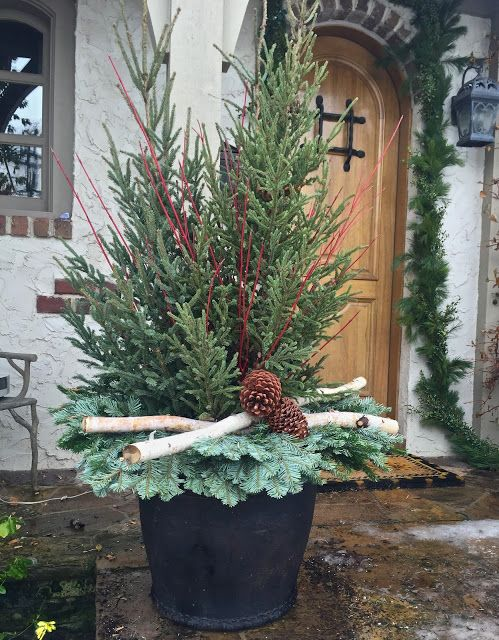 04-a-container-with-fir-trees-branches-and-pinecones