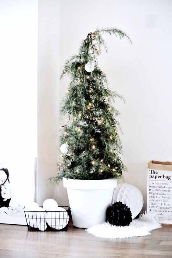 06-cedar-Christmas-tree-with-black-and-white-ornaments
