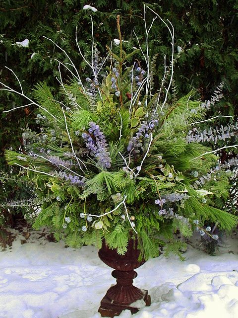 13-a-lush-green-container-with-various-branches