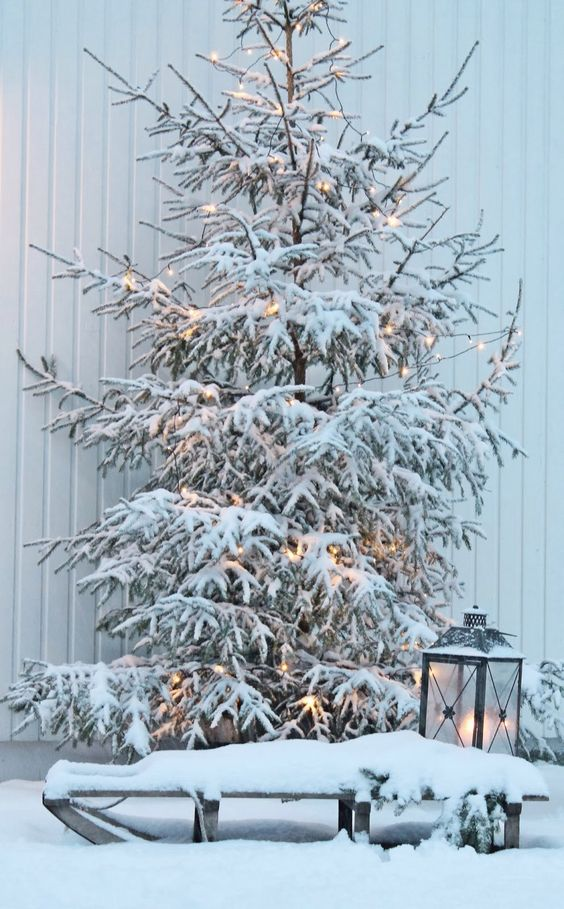 05-snowy-tree-with-lights-and-a-lantern-next-to-it