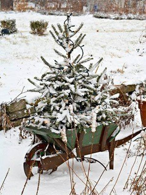 07-a-snowy-tree-in-a-garden-cart-is-a-cute-idea-and-looks-natural