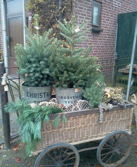 08-a-wicker-trolley-display-with-oversized-pinecones-evergreens-and-two-trees-in-buckets