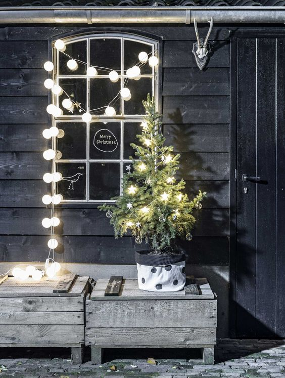 11-small-potted-tree-with-star-shaped-lights