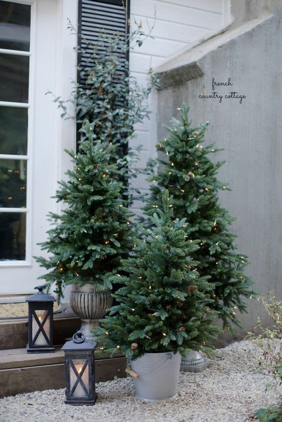 25-potted-trees-with-lights-make-a-big-impact-on-front-porch-decor
